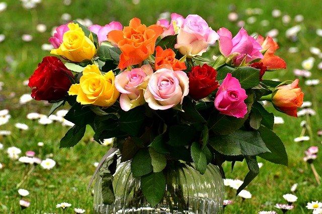 barevné růžičky